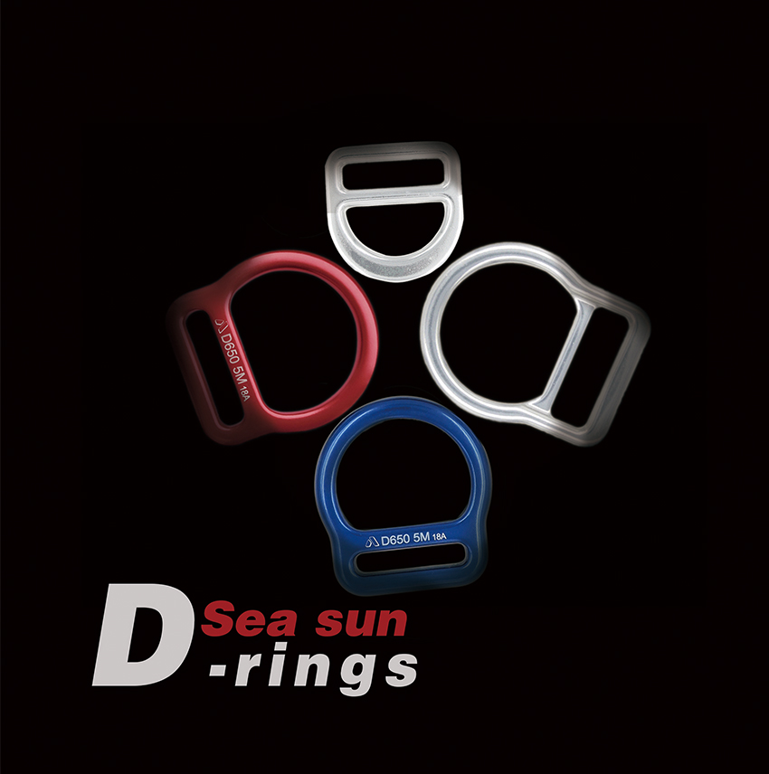 "<div style=""text-align:center;""> D-rings </div>"